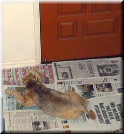 Sulk by the door